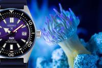 Seiko präsentiert die Prospex PADI Automatik Diver